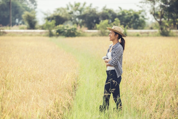 The farmer is in the rice field and takes care of her rice. Free Photo