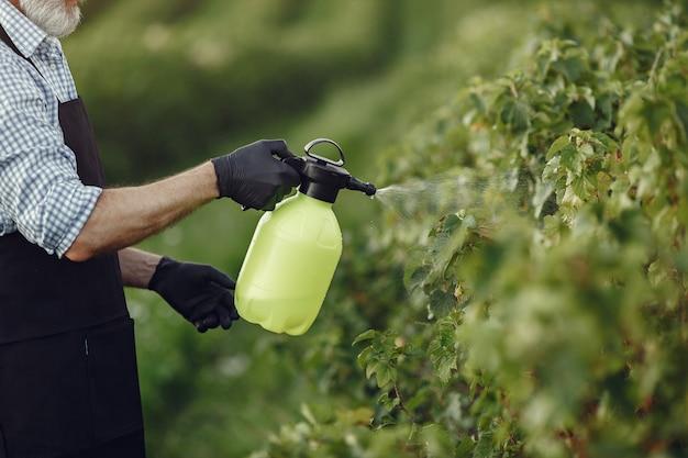 農家が庭に野菜に除草剤を散布。黒いエプロンの男。 無料写真