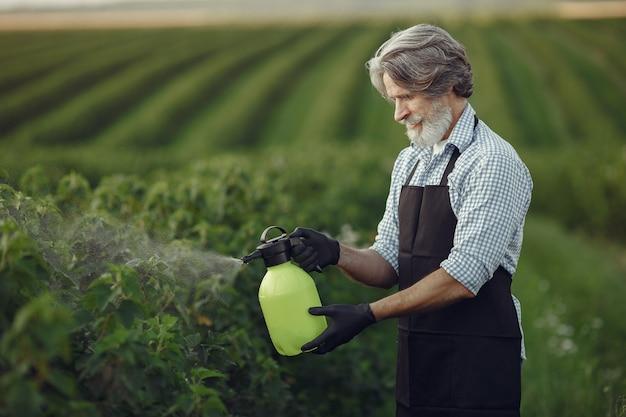 Фермер опрыскивает овощи в саду гербицидами. мужчина в черном фартуке. Бесплатные Фотографии
