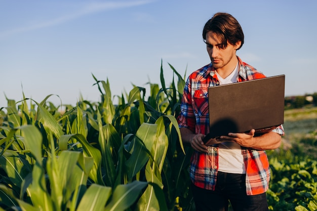Farmer standing in a field holding open laptop and taking a control of yield Premium Photo