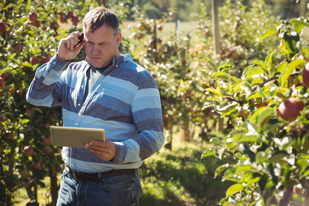 Farmer using digital tablet while talking on mobile phone in apple orchard Free Photo
