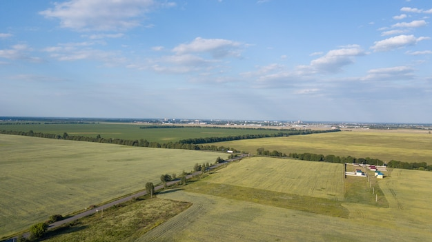 Farmland from above - aerial image of a lush green filed Premium Photo
