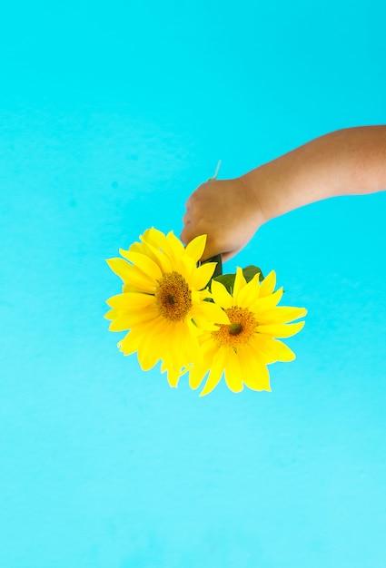 Fashion art  hand of a little child holding yellow sun flower Premium Photo