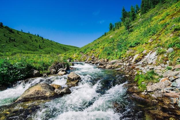 Быстрый водный поток горного ручья среди валунов при ярком солнечном свете в долине Premium Фотографии
