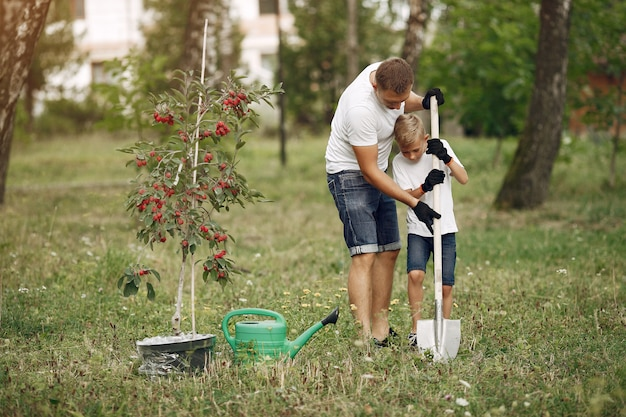Father with little son are planting a tree on a yard Free Photo