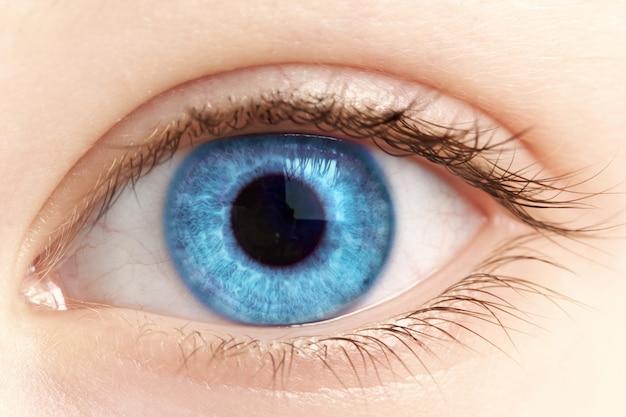 Female blue eye closeup Premium Photo