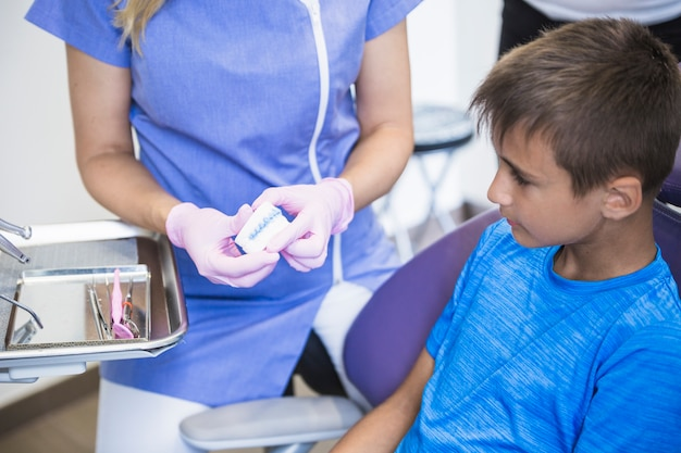 Female dentist hand showing teeth plaster mold to boy in clinic Free Photo