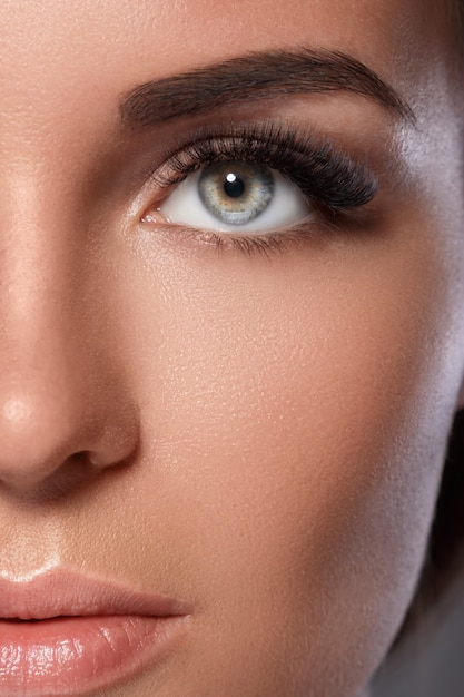 Female face with beautiful eyebrows and artificial eyelashes Premium Photo