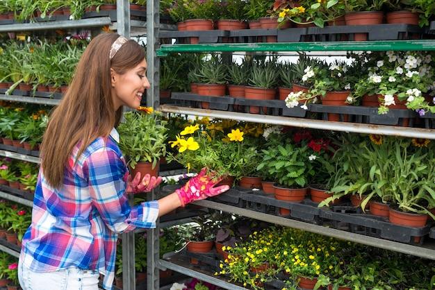 フラワーショップで販売する花をアレンジする女性の花屋 無料写真