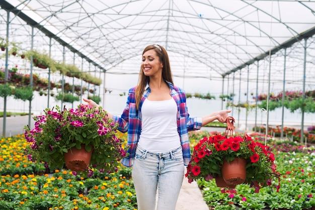 판매를 위해 그들을 배열 온실에서 화분에 심은 꽃 식물을 들고 여성 플로리스트 무료 사진