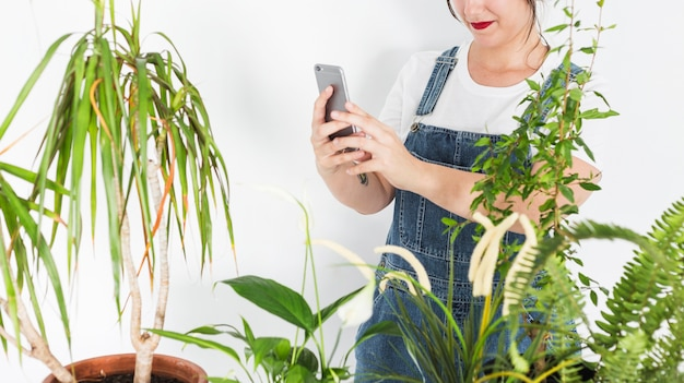 Female florist taking photograph of potted plants on smartphone Free Photo