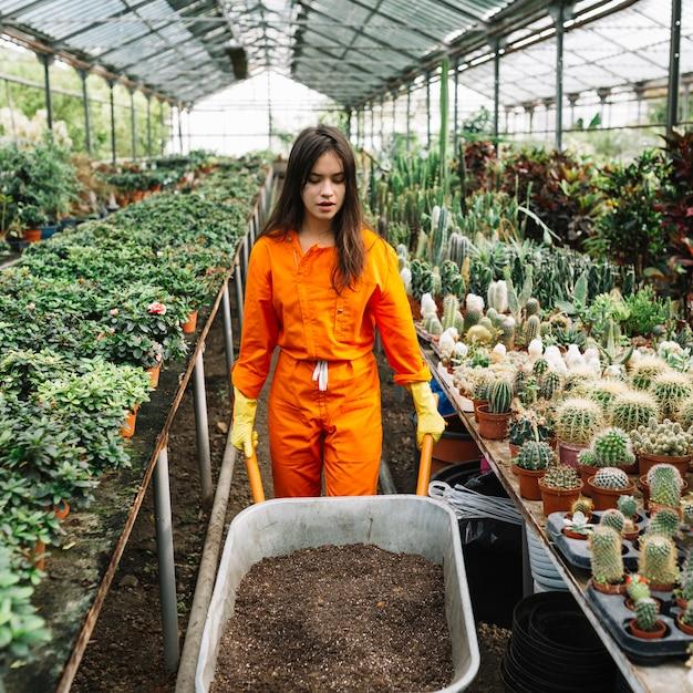 Female gardener holding wheelbarrow with soil in greenhouse Free Photo