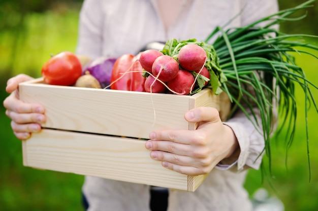 Female gardener holding wooden crate with fresh organic vegetables from farm Premium Photo