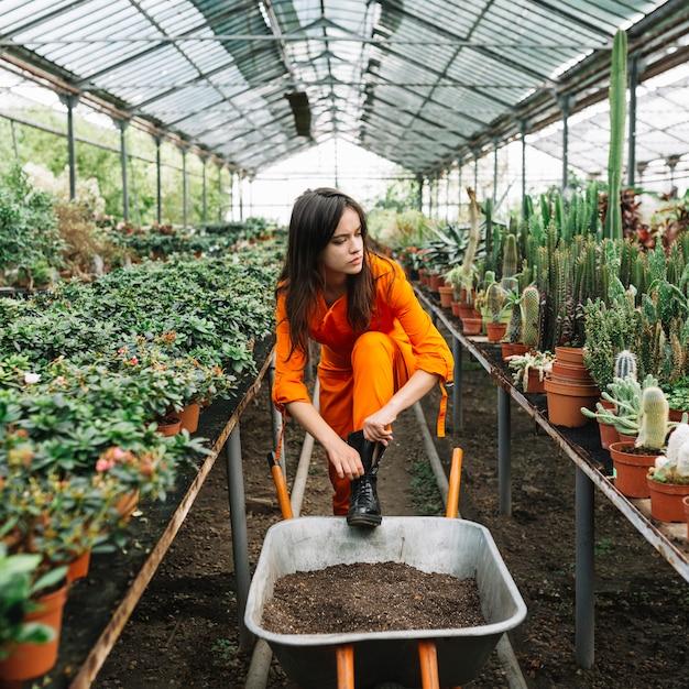 Female gardener wearing wellington boot in greenhouse Free Photo