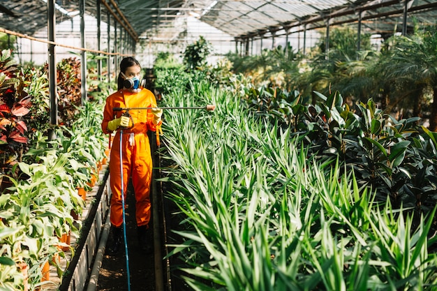 Female gardener in workwear spraying insecticide on plants in greenhouse Free Photo