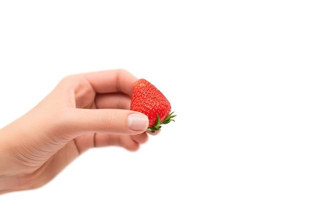 Female hand holding ripe red strawberry isolated on white background. Free Photo
