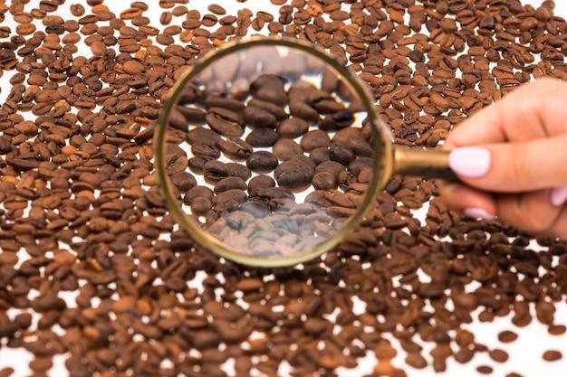 コーヒー豆の上の女性の手keepig虫眼鏡 無料写真