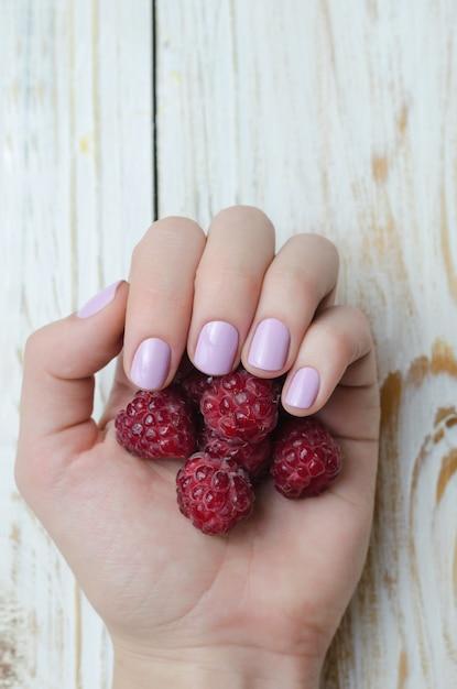 Female hand with light purple manicure holding raspberry. Premium Photo