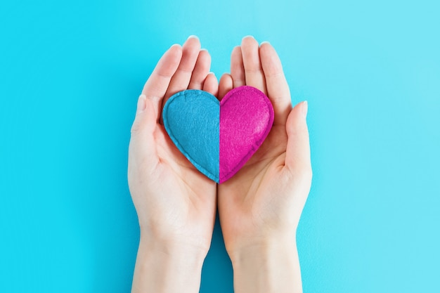 Female hands holding a heart painted in blue and pink color on a blue background, copy space. girl or boy, concept of childbearing. pregnancy twins concept. waiting for a baby. conception, parenthood Premium Photo
