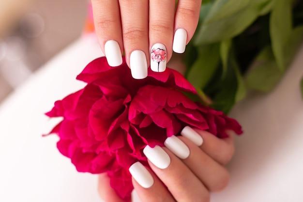 美しいマニキュアの爪を持つ女性の手 Premium写真