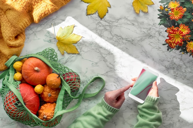 Female hands with mobile phone, orange pumpkins in mesh bag or string bag. top view on the pot of hrysantemum flowers, yellow autumn leaves and wool sweater Premium Photo