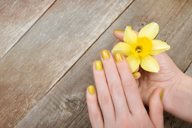 Female hands with yellow glitter manicure holding narcissus flower. Free Photo