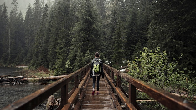 Female hiker walking on the wooden bridge leading toward forest Free Photo