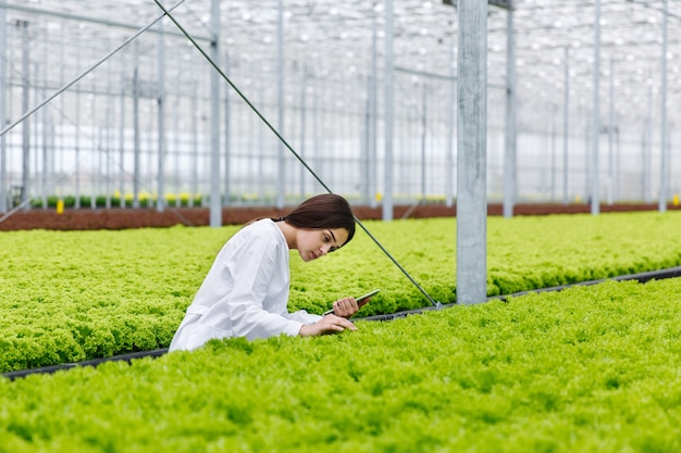 Female researcher holds a tablet studying plants in the greeenhouse Free Photo