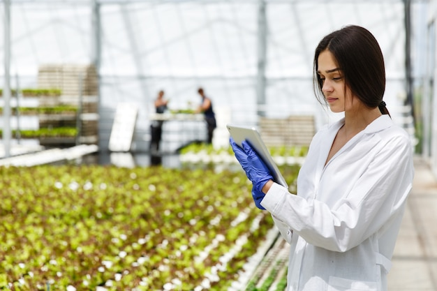 Female researcher reads information from a tablet standing in the greenhouse Free Photo
