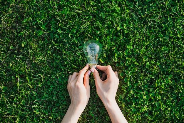 Female's hand holding light bulb over green grass Free Photo
