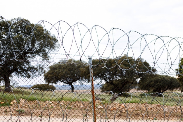 Fence with a barbed wire Premium Photo