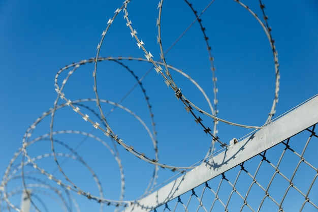 Fence with barbed wire Premium Photo