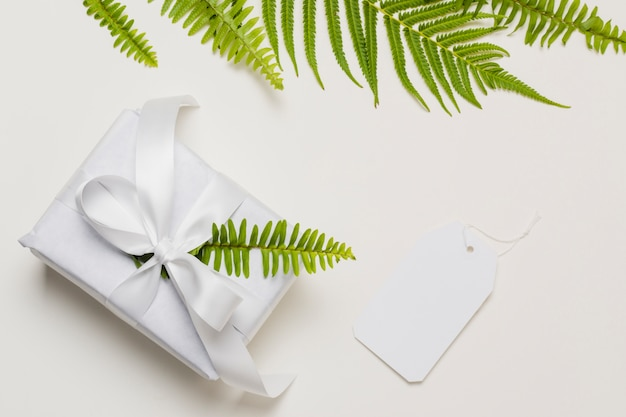 Fern leaf on white gift box with label over plain backdrop Free Photo