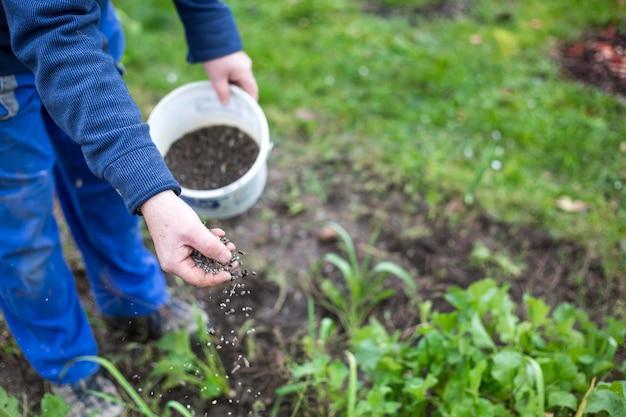 Fertilizing the garden by bio granular fertilizer Premium Photo