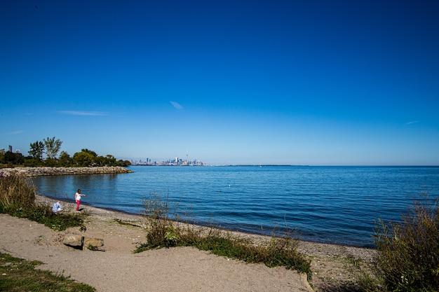 Поле вокруг берега озера Бесплатные Фотографии