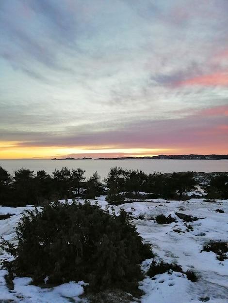 Campo coperto di vegetazione e neve circondato dall'acqua sotto un cielo nuvoloso durante il tramonto Foto Gratuite