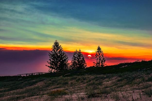 夕方の美しい夕日の間に木のシルエットで草で覆われたフィールド 無料写真