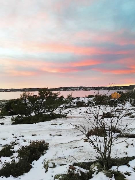 夕焼けの曇り空の下、水に囲まれた緑と雪に覆われた畑 無料写真