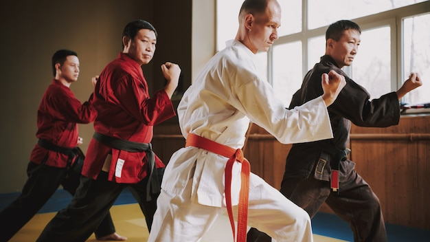 Fighters in different colors keikogi doing fight stances. Premium Photo
