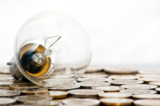 Filament bulb lying on euro coins Free Photo