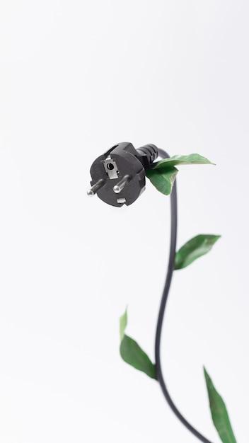 エコロジー、省エネ、エコフレンドリーのトピックに関する概念的な写真。コピースペース、垂直と白い背景の上の電気filka Premium写真