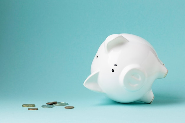 Finance elements with white piggy bank Free Photo