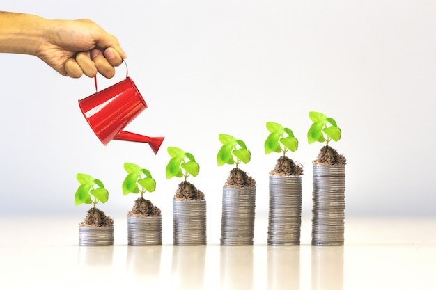 Finance and investment concept - plant growing on money coin stack. Premium Photo