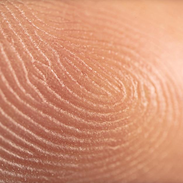 Finger print, super macro Premium Photo