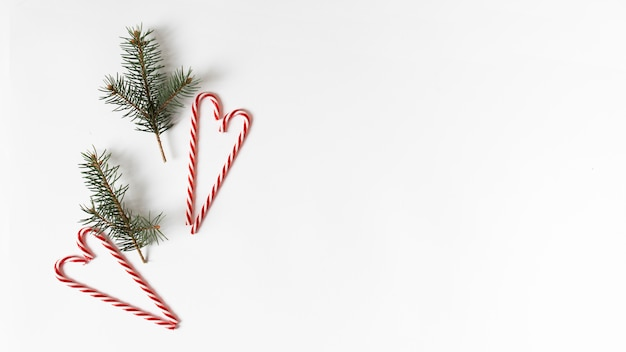 Fir tree branches with candy canes Free Photo