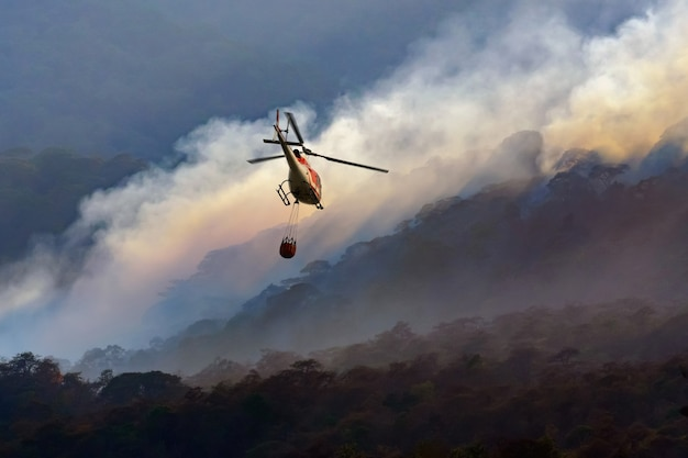 Fire fighting helicopter carry water bucket to extinguish the forest fire Premium Photo
