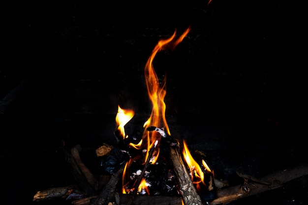 Fire in the fireplace, close up. Free Photo