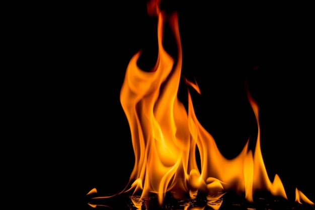 Fire flame on black background. blaze fire flame textured background. Premium Photo