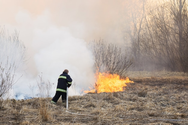 Firefighter battle a wildfire spreading through dry grass and bushes in swamp Premium Photo