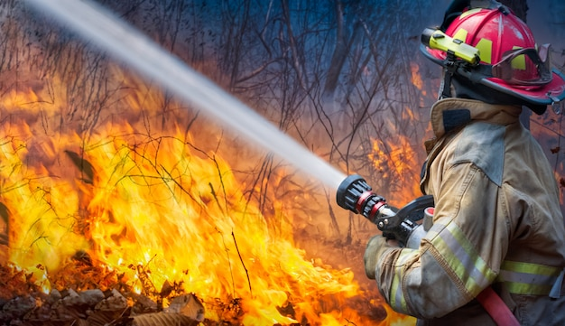 Firefighters spray water to wildfire Premium Photo